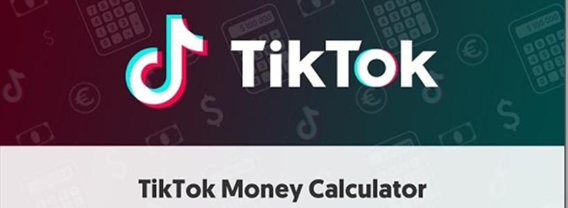 Influencer Marketing Hub Calculator TikTok Review